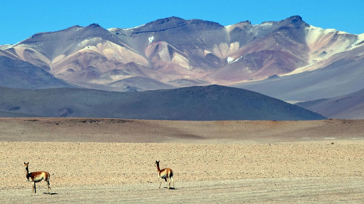 Sud Lipez, Bolivia