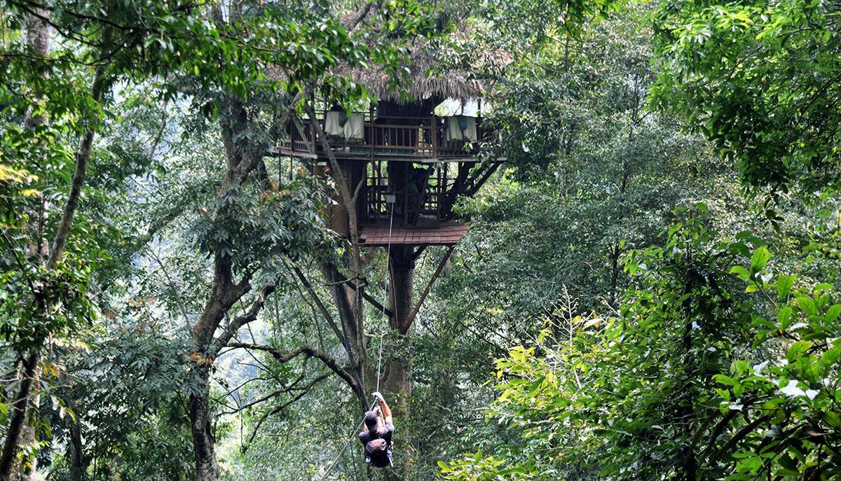 Deelnemer komt met zipline aan in boomhut van gibbon experience.