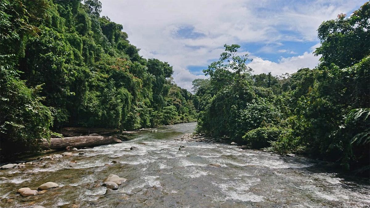 Wild stromende rivier in Maleisisch Borneo.