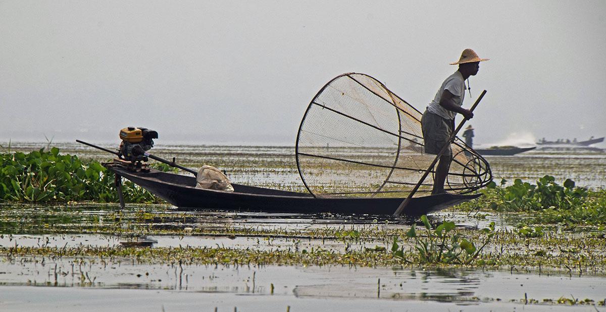 Traditionele visser op het Inle Lake in Myanmar.