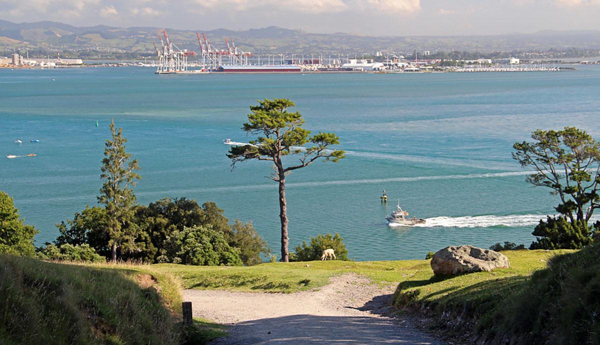 zicht op baai en haven bij Tauranga, Nieuw-Zeeland.