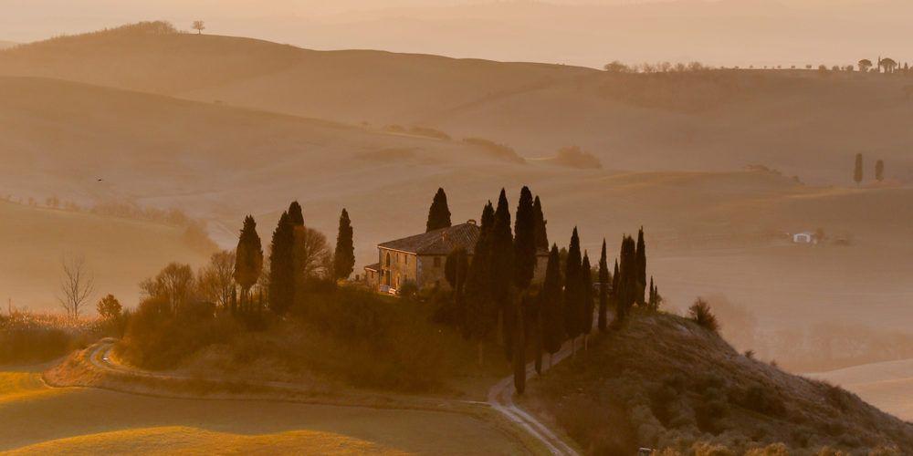 Cipressen in Italie,