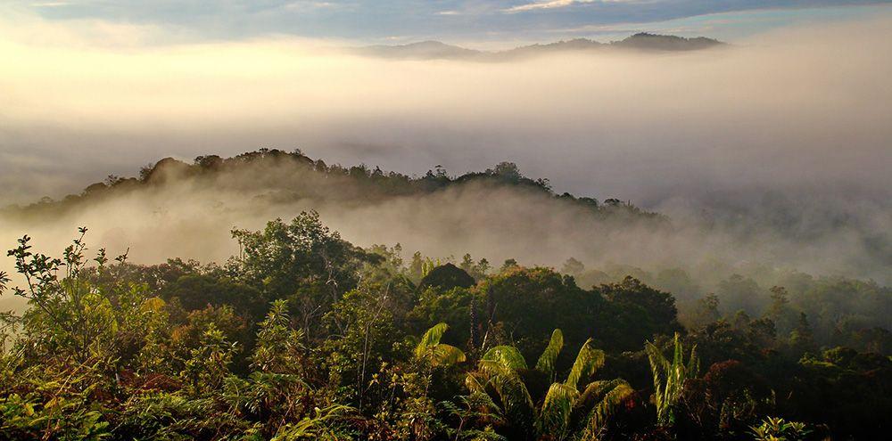 Sarawak, Maleisisch Borneo in Maleisië.