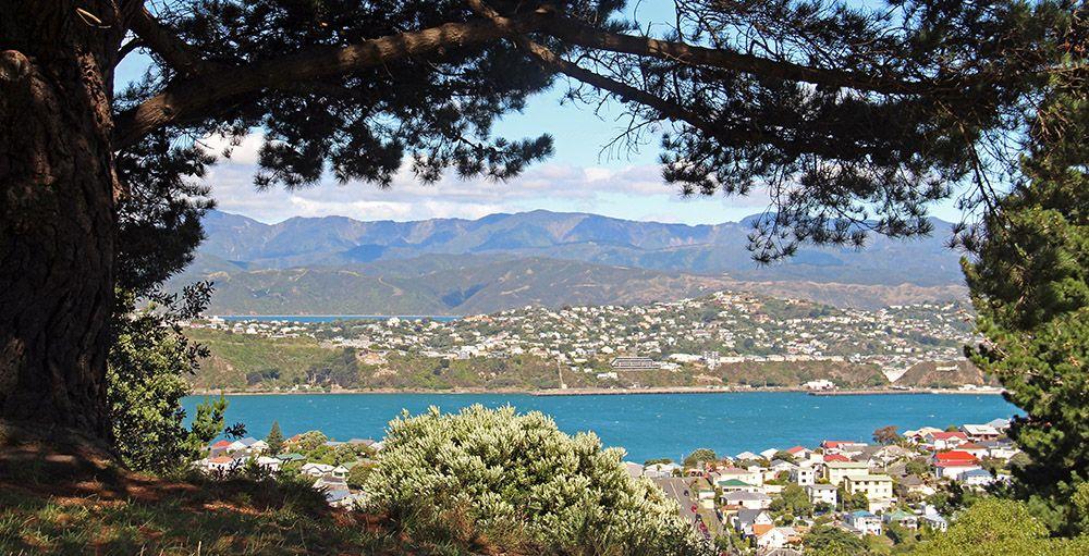 Mount Victoria bij Wellington