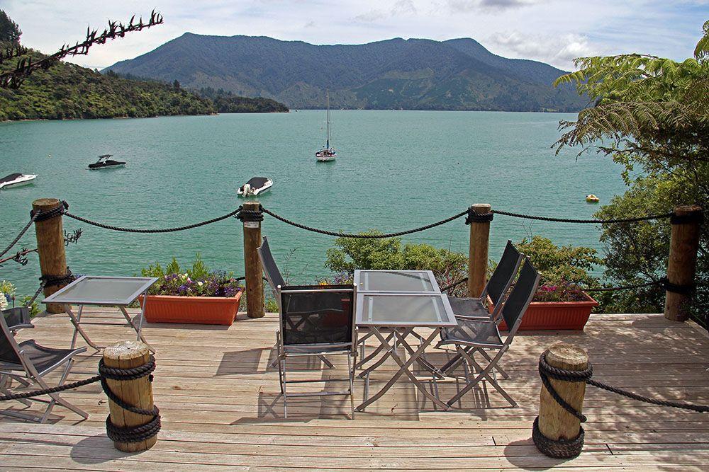 terras bij de marlborough sounds in Nieuw-Zeeland