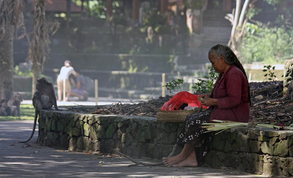Aap en vrouw zitten gezellig op een muurtje bij monkey forest.