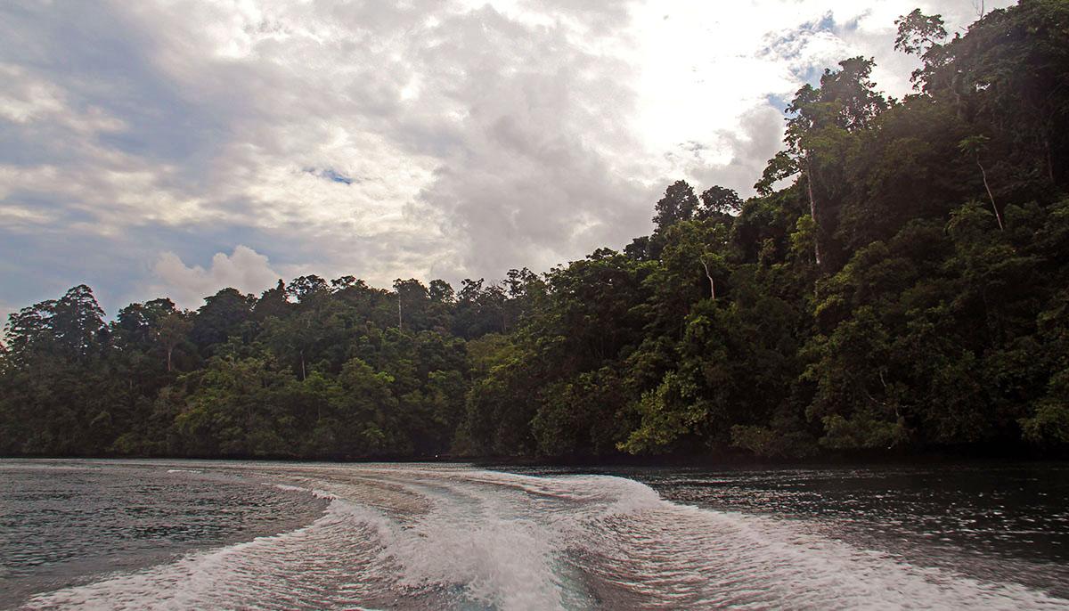 boottocht langs de bezienswaardigheden van Raja Ampat