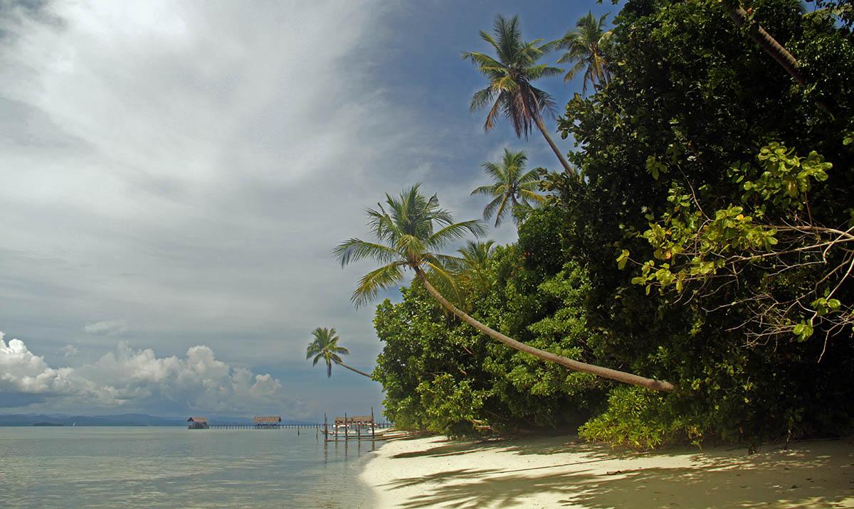 Palmbomen, strand en zee op West-Papoea