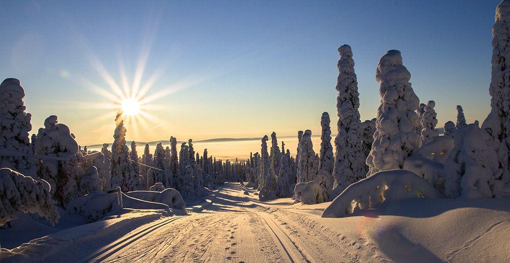 Sneeuwlandschap in Fins Lapland