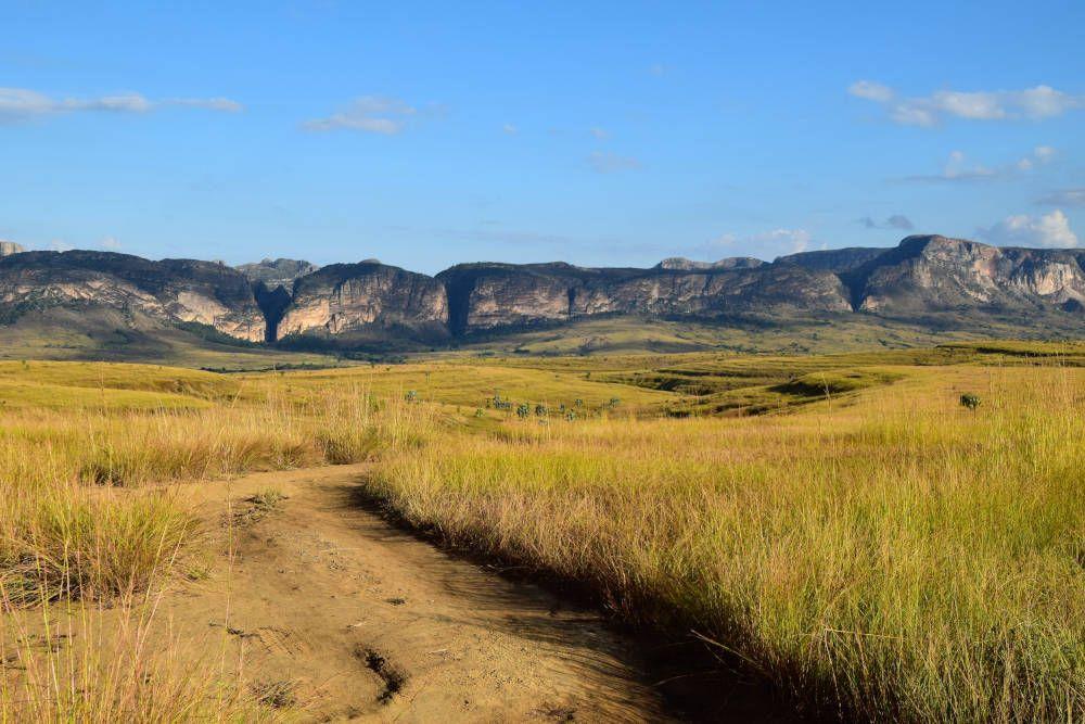 Savanne bij Isalo, Madagaskar