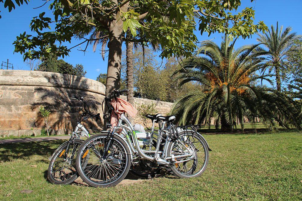 door Valencia kun je heerlijk fietsen