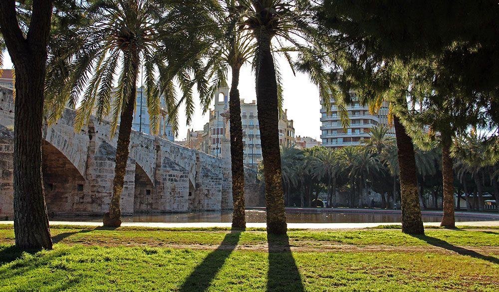 Turia park in Valencia