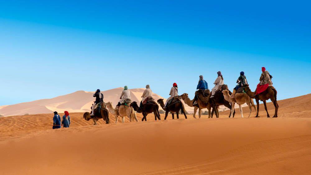 Kameelsafari door de Sahara