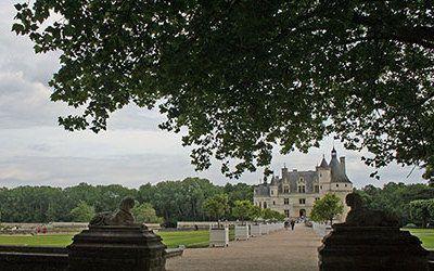 Kastelen- en wijnroute langs de Loire