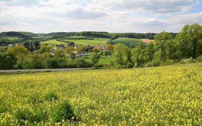 Wandeling bij Klimmen: kastelen, Geul en Gerendal