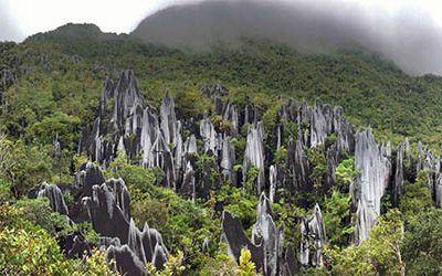De koppensnellers van Borneo