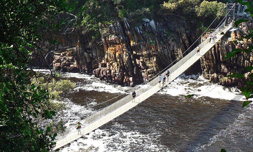 Hangbrug in het Tsitsikamma National Park, Zuid-Afrika