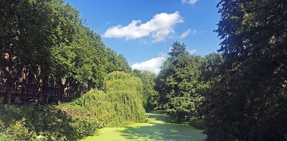Erasmuspark in Bos en Lommer, Amsterdam