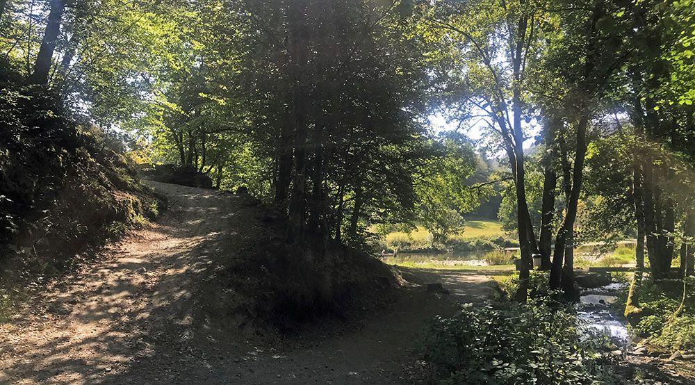Bij de Semois in de Belgische Ardennen