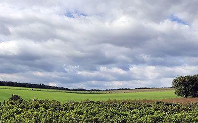 Fietstocht langs de wijngaarden van Groesbeek