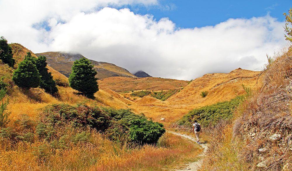 Glenorchy, Zuidereiland, Nieuw-Zeeland