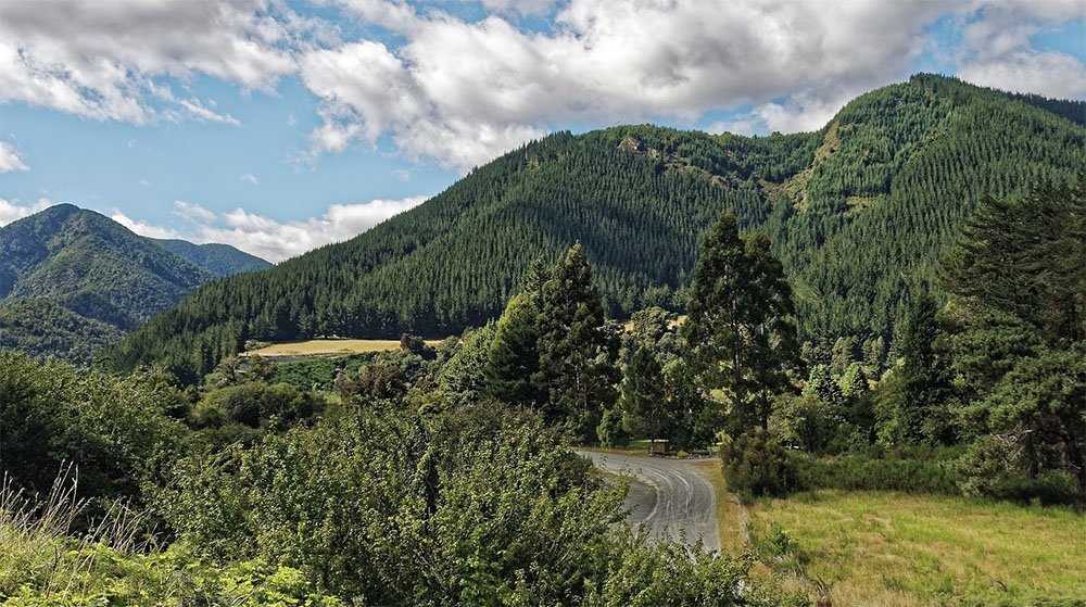 Mount Richmond, Nieuw-Zeeland