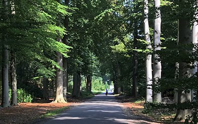 Fietsroute rond Woudenberg op de Utrechtse Heuvelrug