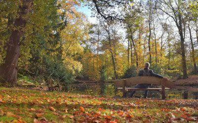 Trage Tocht bij 's-Graveland: genieten van begin tot eind