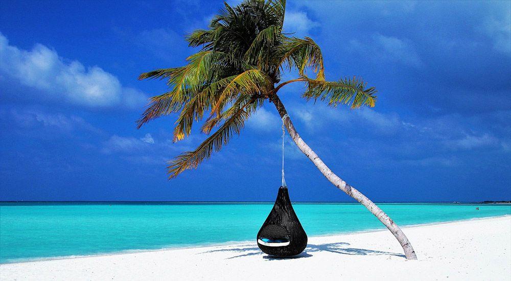 Hangstoel onder palmboom op de Malediven