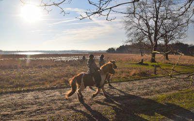 Fietsroute Op zoek naar Oude Willem in Drenthe