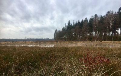 Wandeling bij Hooghalen naar Kamp Westerbork