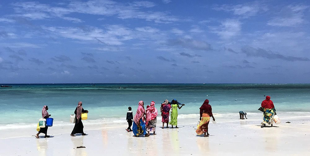 Strand Zanzibar, Tanzania