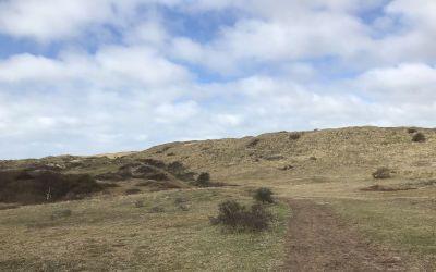 Wandeling bij Bakkum: bos, duinen en strand