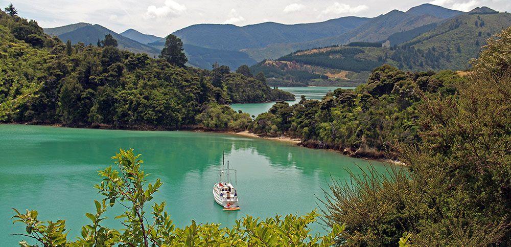 Boot in een baai op Zuidereiland van Nieuw-Zeeland.