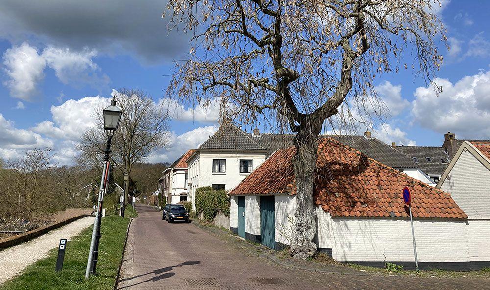 Kornewal in Oranjestad Buren