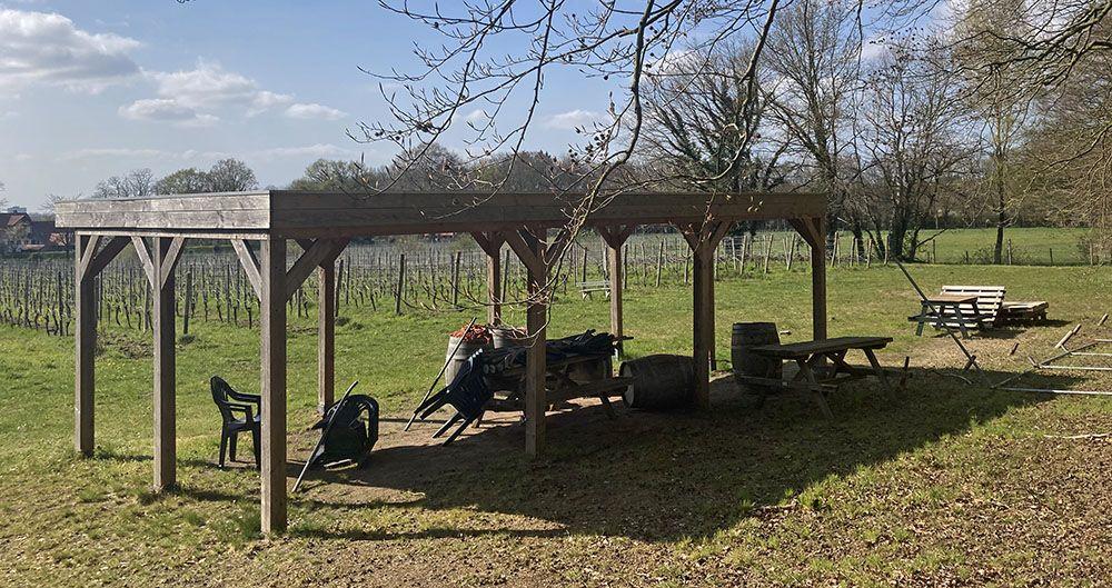 Wijngaard bij Wageningen