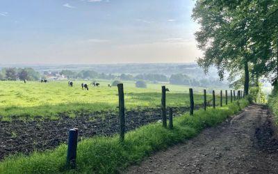 De Dutch Mountain Trail: prachtige tocht in Zuid-Limburg