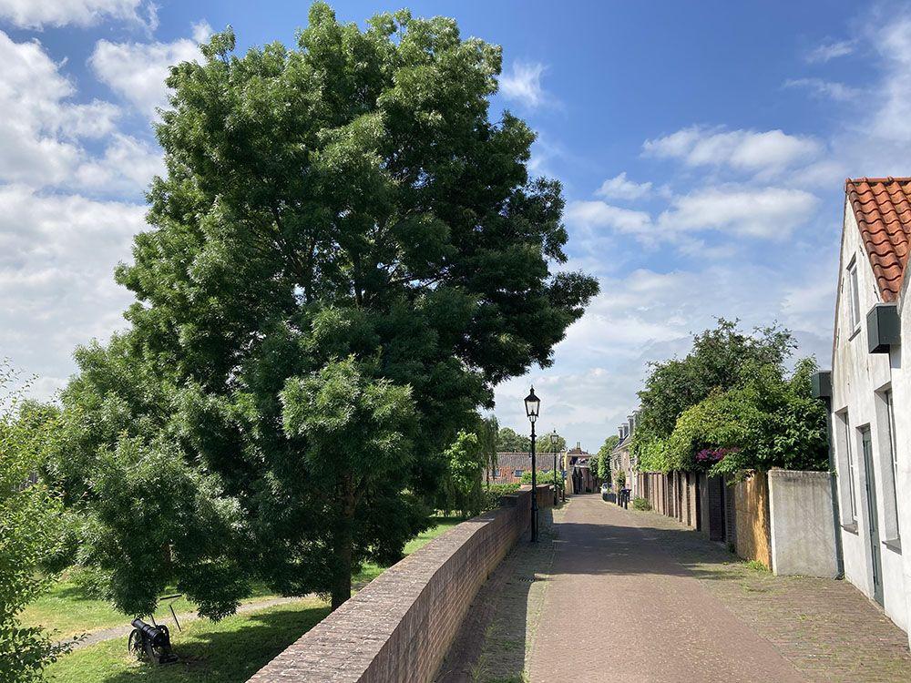 Stadsmuur in IJsselstein