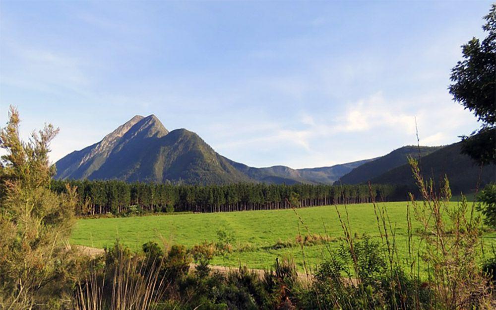 Berg in Tsitsikamma National Park