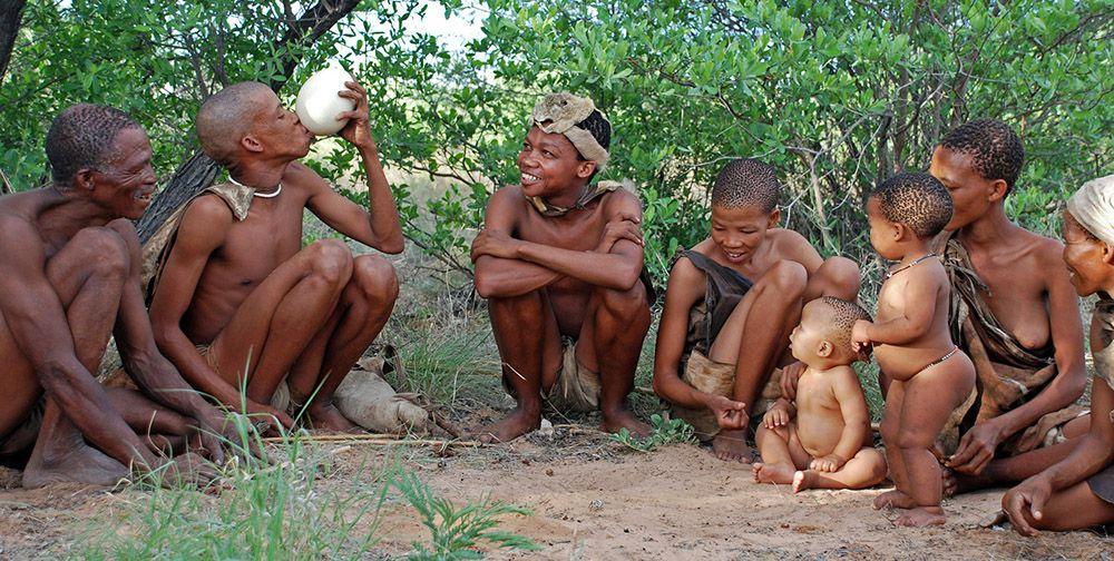 Stam in Botswana, zuidelijk Afrika